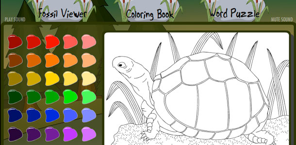 Natural History Museum Kids Microsite Coloring Book: Turtle