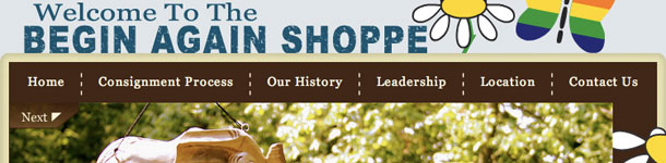 The Begin Again Shoppe Home Page Featured Image
