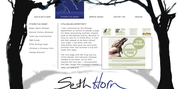 Seth Horn Interactive Design Page