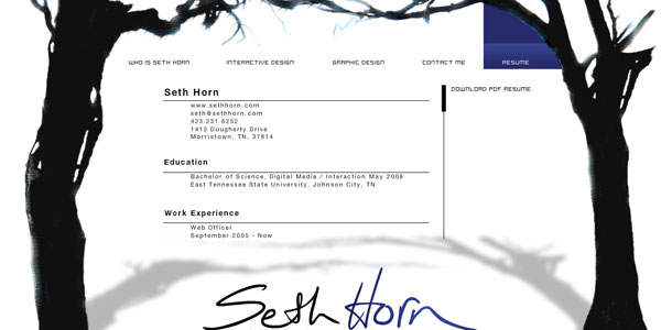 Seth Horn 2008 Resume Page